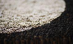 Ygdrassil - Natural Art   Rob Plattel: Natural Art, Styling & Floristry