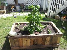 A raised planter box made from recycled pallets.  Idea sent by Lesa D !