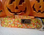 Dog Collar: Candy Corn - Halloween, adjustable