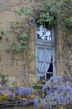 Gorgeous French blue, flower covered window near Sussex. |  Ana Rosa  (Should I have said FRENCH blue on an English window?  Ssh!)  ᘡղbᘠ