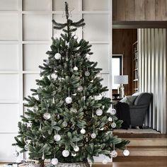 New Elegant tree
