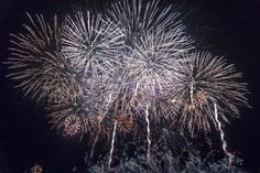 We are the party   Edinburgh Hogmanay New Year's Firework