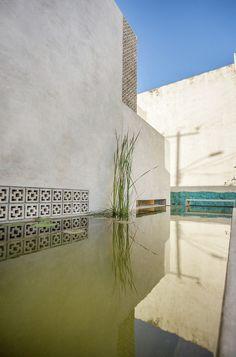 Gallery of Gabriela House / TACO taller de arquitectura contextual - 12