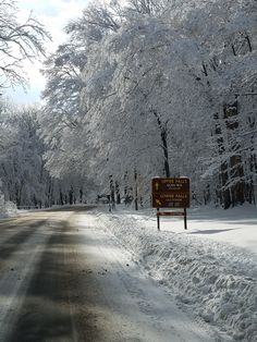 A winter wonderland scene on Park Rd.