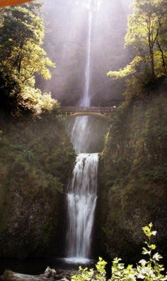 Top five Columbia Gorge hikes