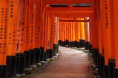Kyoto | Insolit Viaj
