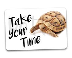 #fridgemagnets #magnets Take Your Time Turtle Fridge Magnet by BetterMagnets