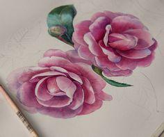 ️Привет, друзья!) Наступление осени чувствуется все сильнее. А цветы и акварель для меня отличный повод для хорошего настроения в любое время года...) ------------------------------- Hallo!)) Day for flowers) work in progress... #illustrator #illustration #paint #painting #drawing #акварель #живопись #иллюстрация #иллюстратор  #aquarelle #aquarela #watercolor #watercolour #waterblog #topcreator #art #arts #artgallery #artstagram #art_collective #art_help #artfido  #розы #камелия #цветы #...