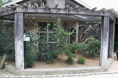 ZOO Antwerpen - Bird House (Hornbill aviary)