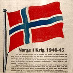 meldinger Narvik