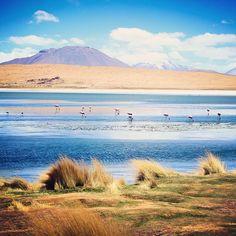 Instagram's somyatiwari transports us to the salt flats of Bolivia.