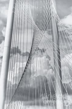 gotta love the lines in this pic ~~New Skyline Bridge ~ Detail, Margaret Hunt Hill Bridge, Trinity River, Dallas, Texas by Joan Carroll~~ Art Prints For Sale, Fine Art Prints, New Skyline, Thing 1, Santiago Calatrava, Sale Poster, Fine Art Photography, Creative Photography, Fine Art America