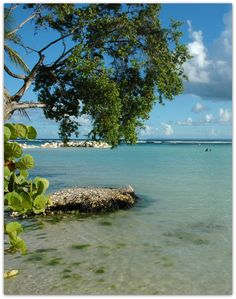 Guadeloupe http://www.sejour-express.com/sejour-express-pays/guadeloupe/GP.html
