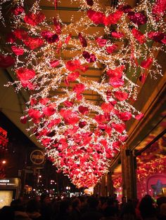 Paris in January. (by way of Hither & Tither) Paris in January. (by way of Hither & Tither) New Years Decorations, Valentines Day Decorations, Ceremony Decorations, Light Decorations, Happy Valentines Day, Christmas Decorations, Holiday Decor, Wedding Stage, Dream Wedding