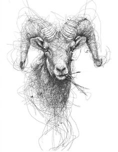 Realistic Portraits Of Animals Drawn With Scribbles - DesignTAXI.com