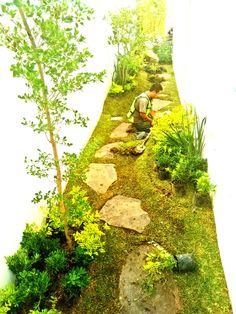 Casa manjarrez vivero jardin es arte al natural for Vivero casa jardin