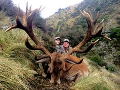 Washington state resident Bob out with us last week finally made his 10 year dream a reality by stalking in and taking a great 387 inch Red Stag. It took well over an 1 hr to drag this majestic Stag up onto the only clear flat spot on the hill for a great photo. A lot of great meat again on this Stag that will be well utilized for the rest of the season.