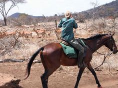 SUPER SPECIAL OFFER!!!! 1000 Euros OFF August 14-21! South Amboseli Ride in Tanzania 😍🐘 Find out more at: http://www.hiddentrails.com/…/tanzania_south_amboseli_ride.aspx