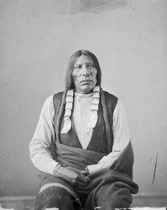 Coyote - Oglala - 1872