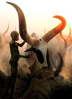 Dinka of Southern Sudan by Carol Beckwith & Angela Fisher