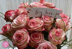 Valentinstag Rosen Flowers, Plants, Valentines Day, Plant, Royal Icing Flowers, Flower, Florals, Floral, Planets