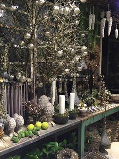 Bang & Thy │ Eksklusiv blomsterkunst i hjetet af Århus ⚶ Flower Decorations, Christmas Decorations, Table Decorations, Gardening, Floral Arrangements, Bangs, Xmas, Display, Green