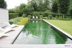 Aanleg-zwemvijver-Bart-Lemaitre-02.jpg