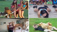 Cele mai ciudate imagini de pe internet, pentru un ras copios! - http://dailynews24.info/cele-mai-ciudate-imagini-de-pe-internet-pentru-a-avea-o-zi-fericita/