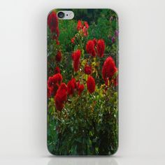 Roses iPhone Skin by Buy Roses, Iphone Skins, Ipod, Pictures, Photos, Ipods, Grimm