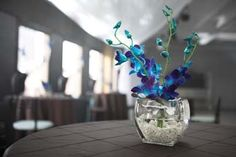 Beautiful blue orchids in a centerpiece by sponsor The Late Bloomer Floral Design Studio, Inc. by isesmsp, via Flickr