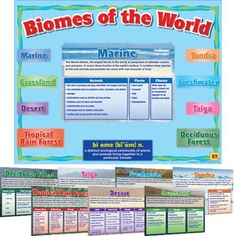 Biomes of the World Poster Set