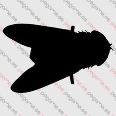Pegame.es Online Decals Shop  #animal #insect #fly #vinyl #sticker #pegatina #vinilo #stencil #decal