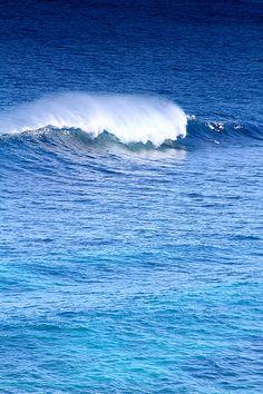 wave australia