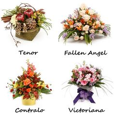 Tenor       - The arrangement brings the taste of outdoors to indoors Contralo    - It shines with bright colors and variety Fallen Angel- A bountiful arrangement to surprise someone Victoriana  - Captures the essence of Romance! Select your favorite and get it here #Florist #Bouquet #Tenor #Contralo #Fallenangel #Victoriana #Floristnz #Newzealand #Flowers #Bouquets #gifts #Auckland #Flowerseller #Sale #NZ