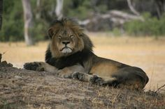 Photograph Cecil oldman waking up by Brent Stapelkamp on 500px