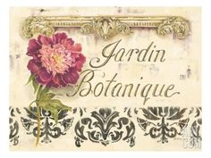 Jardin Botanique Giclee Print by Kathryn White at eu.art.com