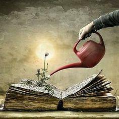 Wachstum... geistiger Natur
