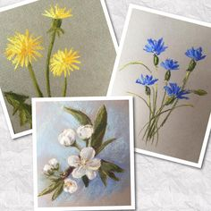 Учебные этюдные цветочки для #пастельонлайн2  Не идеальны, но милы.  #учурисовать #учусьрисоватьпастелью #pastedrawing #flowers
