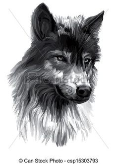 Grey wolf Illustrations and Clipart. 248 Grey wolf royalty free ...