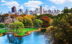 Buntes Farbenspiel der Bäume im Central Park im Herbst, New York, USA