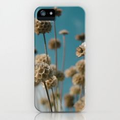 Photographic Art Print iPhone 6 5 4 and 3 Cases by AmandaJaneDalby
