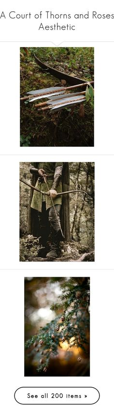 """A Court of Thorns and Roses Aesthetic"" by kate7695 ❤ liked on Polyvore featuring backgrounds, pictures, photos, weapons, brave, lord of the rings, fantasy, pics, lotr and photo"