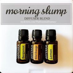 diffused 2 drops each of Bergamot, Wild Orange, lemon Bergamot is unique among citrus oils with its ability to be both uplifting and calming. Wild Orange & Lemon will energize and uplif