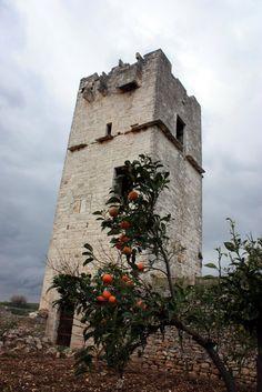 Torre delle pietre rosse XIII sec.