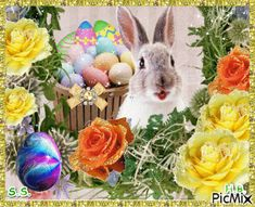 Little cute haRE. Happy Easter Gif, Emoji Love, Happy Friendship Day, Easter Pictures, Jesus Pictures, Handmade Decorations, Hare, Funny Cute, Pet Birds