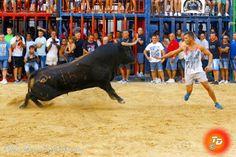 torodigital: La peña cultural taurina de Nules exhibe su astad...