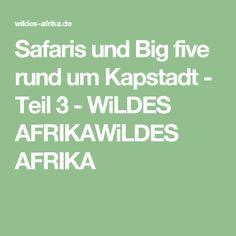 Safaris und Big five rund um Kapstadt - Teil 3 - WiLDES AFRIKAWiLDES AFRIKA