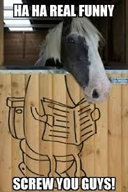 Haha really funny – horse meme. Laugh your self out with various memes that we collected around the internet. Funny Horse Memes, Funny Horse Pictures, Funny Horses, Cute Horses, Horse Photos, Horse Love, Funny Animals, Cute Animals, Funny Memes