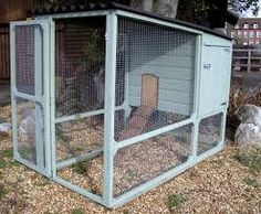 walk in poultry house - Google Search