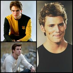 FB Party Post 5-Fav secondary characters (Cedric Diggory, Finnick Odair, Gale Hawthorne)